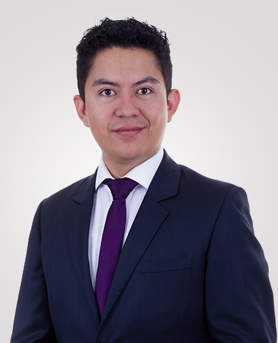 Cesar Olmedo Navarro
